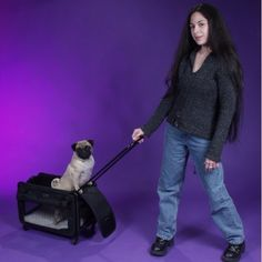 85b4b85b35 92 Best Strollers and bike trailers for dogs, cats and puppy images ...