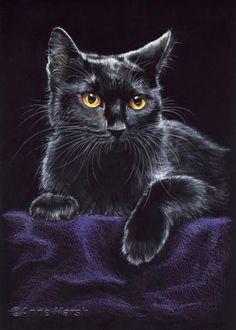 BLACK CAT BLACK VELVET LIMITED EDITION FANTASY PRINT PAINTING ANNE MARSH ART | eBay