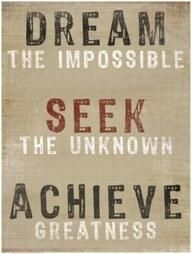 DREAM SEEK ACHIEVE