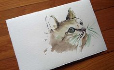 Gatto in acquerello e china