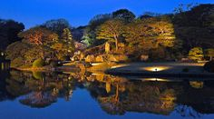 Night time light-up of Japanese garden Rikugien @Komagome Daichi, Tokyo