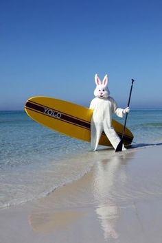 Lol happy Easter everyone