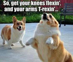So get your knees flexin and your arms t-rexin...