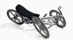 (Bergwerk Bikes GMBH)    Lean steering (out of production)