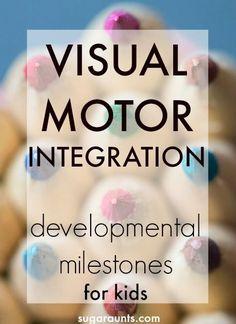Visual Motor Integration developmental milestones for kids 0-5 and activities to work on these eye-hand coordination skills.