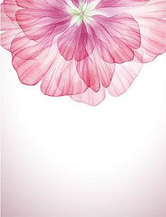 Dream pink flower with vector 01 - WeLoveSoLo Iphone Wallpaper Elegant, Lit Wallpaper, Watercolor Wallpaper, Abstract Watercolor, Watercolor Flowers, Wallpaper Backgrounds, Floral Watercolor Background, Wallpapers, Flower Background Wallpaper