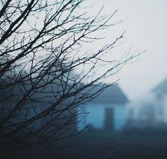 Foggy morning by *December Sun, via Flickr #fog #foggy #morning