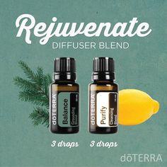 doTERRA Essential Oils Rejuvenate Diffuser Blend