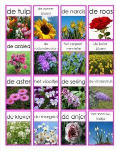 bloemen memorie