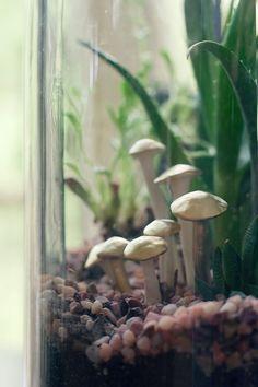 DIY terrarium decorations