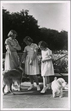 De prinsessen Beatrix, Irene en Margriet met de honden Pup en Martin de kleine witte Sealyham terriër.