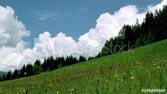 Videos, Berg, Stock Video, Animals, Alps, Landscape, Animales, Animaux, Animal