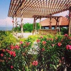 #wanderlust #exploreindonesia #explorebanyuwangi #reiki #tabuhan #tabuhanisland #yoga #instalike #ijen #outdoor #outdoors #photography #hiking #trekking #climbing #kawahijen #pulautabuhan #honeymoon #wedding #java #yogyakarta #bali #bromo #borobodur #prambawan #meditation #banyuwangi #bangsringbreeze #vsco #vscocam #surf #surfing #windsurfing #kite #kiteboarding #kitesurfing #mountainbiking #snorkeling #diving #boats #boating