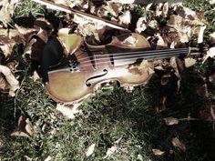 My violin. Photography by Olivia De Gruchy