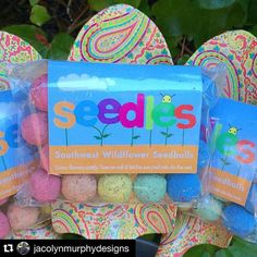 "Giveaway by @jacolynmurphydesigns  You need Seed Bombs in your life! All you do is ""throw them and grow them"". My friends at Seedles are giving away a pack of their amazing rainbow wildflower seedballs. Their mission is to inspire kids to grow one billion wildflowers - how amazing is that?!? To enter: 1. Like this post on Instagram and make sure you follow me  2. follow @jacolynmurphydesigns 3. then tag a friend in a comment here. Each comment = One entry  tag with a different friend as many…"