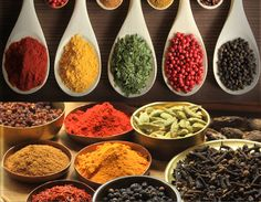 On Tour in The Spice Tin