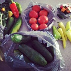 Fresh produce from Farmer Dave (on our team) - LOVE fresh veggies!