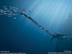 Monstruos Marinos de la National Geographic.