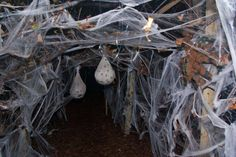 Bat Cave Decor