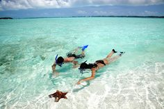 Snorkeling in Great Exuma at @SandalsResorts Emerald Bay. The Tahiti of the Caribbean for its crystal clear blue waters!