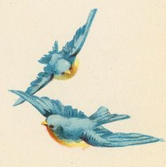 ephemera birds | vintage ephemera blue birds | {Ephemera}