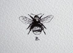 Scientifically speaking the bee shouldn't be able to fly, it doesn't have the right aerodynamics. But the bee flies anyway, he literally defies all reasoning and expectations.                                                                                                                                                      More