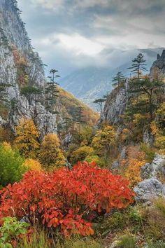 Cerna Valley, Romania, www.romaniasfriends.com