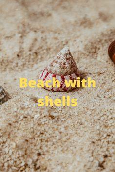 Beach, Self, The Beach, Beaches