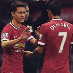 Manchester United Manchester United, The Unit, Sports, Red, Hs Sports, Man United, Sport