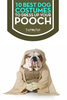 Diligent Dog Clothes Summer Like Air Mesh Dog Tshirt Dog Vest Dog Shirt French Bulldog Chihuahua Cat Shirt Pet Clothes Ropa Perro Pug Home & Garden