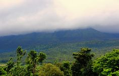 Road trip to Chikmagalur http://www.tripoto.com/trip/road-trip-to-chikmagalur-8686 #travel #Road #Theme #Trips
