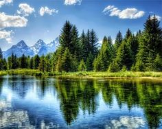 Island Park Idaho. Our family goes here every summer. We canoe down the river, fish, hike, roast hot dogs and s'mores and just enjoy the serenity and quiet.