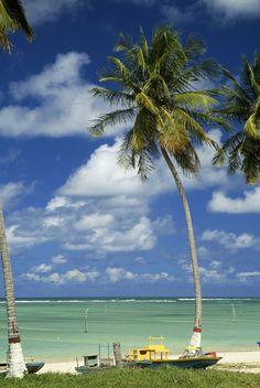 Vinha visitar essa linda praia em São Miguel dos Milagres, Maceió, Alagoas, Brasil.   www.facebook.com/destinoALAGOAS
