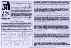 The human history on Earth – What Billy Meier was told by the extra-terrestrials. 5  The genetic manipulation of human races in the Sirius region    Whereas the old Lyrians/Vegans always maintained and remembered their combat capability and ancestry background, this was lost by the Sirians and Malonans. Only the Lyrans/Vegans, and later the Pleiadians/Plejarens and Askets people in the DAL-Universe retained the knowledge that the Henok people, early on, split into two different lines, which…