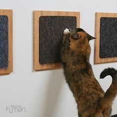 Glue a carpet sample to a wooden frame for a minimalist cat scratch post. | 26 Hacks That Will Make Any Cat Owner's Life Easier #catsdiyhouse #cathouseplywood