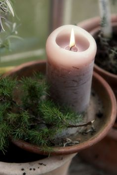 simple candle in terra cotta dish with evergreen  from Modern Country: Early, crisp and cold, but beautiful..