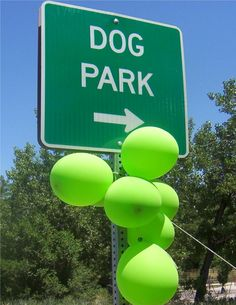 We held a party at Englewood to Celebrate the greening of Canine Corral off-leash park.