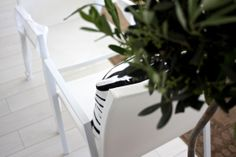homevialaura | balcony renovation | striped cushion | outdoor furniture | olive tree