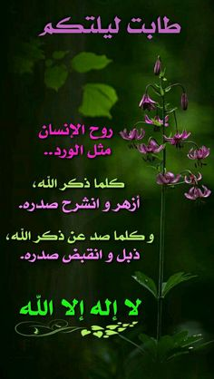 Good Morning Images Flowers, Good Morning Photos, Good Morning Gif, Good Evening Greetings, Good Evening Wishes, Arabic Poetry, Arabic Words, Funny Arabic Quotes, Islamic Love Quotes