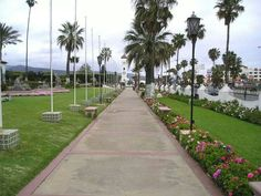 Ensenada Baja California Norte, Mrxico..