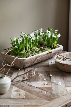 So fresh and pure . Great if you can bring spring home. The rough, wooden bowl is the perfect choice for this green spring creation. Spring Decoration, Decoration Table, Ikebana, Garden Plants, Indoor Plants, Deco Table, Spring Home, Easter Wreaths, Flower Boxes