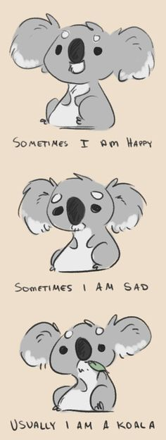 sometimes i am happy sometimes i am sad usually i am a koala