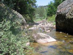 Tramo del río #Arlanza en la provincia de Burgos.