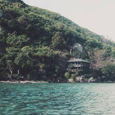 House in the trees - Fiji #fiji #island #nangalia #holiday #house #trees #water #ocean #worldjar #worldtrip #backpacker #instapic #travel #adventure #wilderness #intothewild #landscape #trip #explore #nature #visualsoflife #instatravel #picoftheday #theglobewanderer #wanderlust #wildernessculture #earthfocus #beautifuldestinations #canon70D #roadtrip