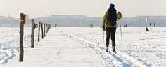 Berlin - Ski-Langlauf - visitBerlin.de