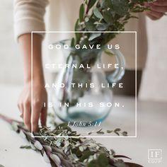 1 John 5:1-13 | IF:Gathering