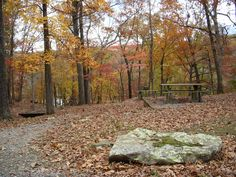 Devil's Den State Park, Ark  Our picnic spot; the falling leaves kept getting in our lunch.
