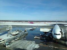 新千歳空港 ピーチの航空機が見える