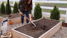 How to Grow Potatoes From Store Bought Potatoes - Gardening Channel Grow Potatoes, Planting Potatoes, Potato Gardening, Deep Winter, Food Staples, Fresh Vegetables, Sprouts, Harvest, Succulents