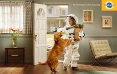 """誰よりも喜んでくれるペットの犬を「まるで宇宙から帰ってきたように喜ぶ」、「まるで漂流から帰ってきたように喜ぶ」と""""その喜び具合""""を例えることで、「誰よりもあなたのことを待っている」というメッセージを強調しました。  No one misses you as much as your dog. あなたの犬ほど、あなたの帰りを待ちわびている存在なんていない。"""